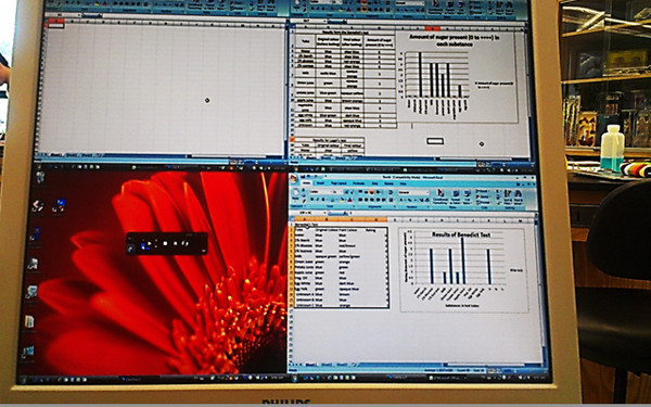 A LiteShow 3 enabled display in the Biology Lab
