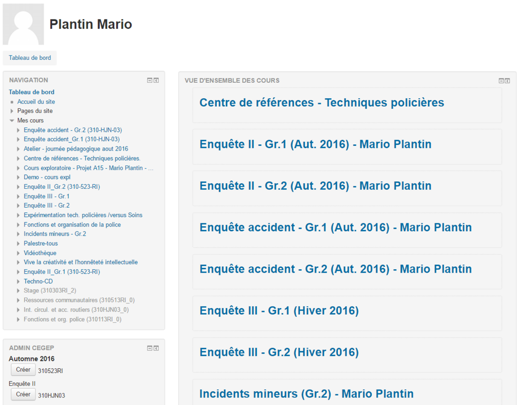 Screenshot – Plantin Mario - Dashboard
