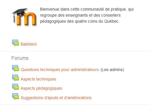 Une capture écran de la page d'accueil du nouvel espace abritant la communauté de pratique sur Moodle du réseau collégial